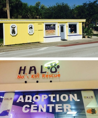 HALO Adoption Center